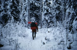 800px-Man_with_backpacking_walking_in_forest_at_winter